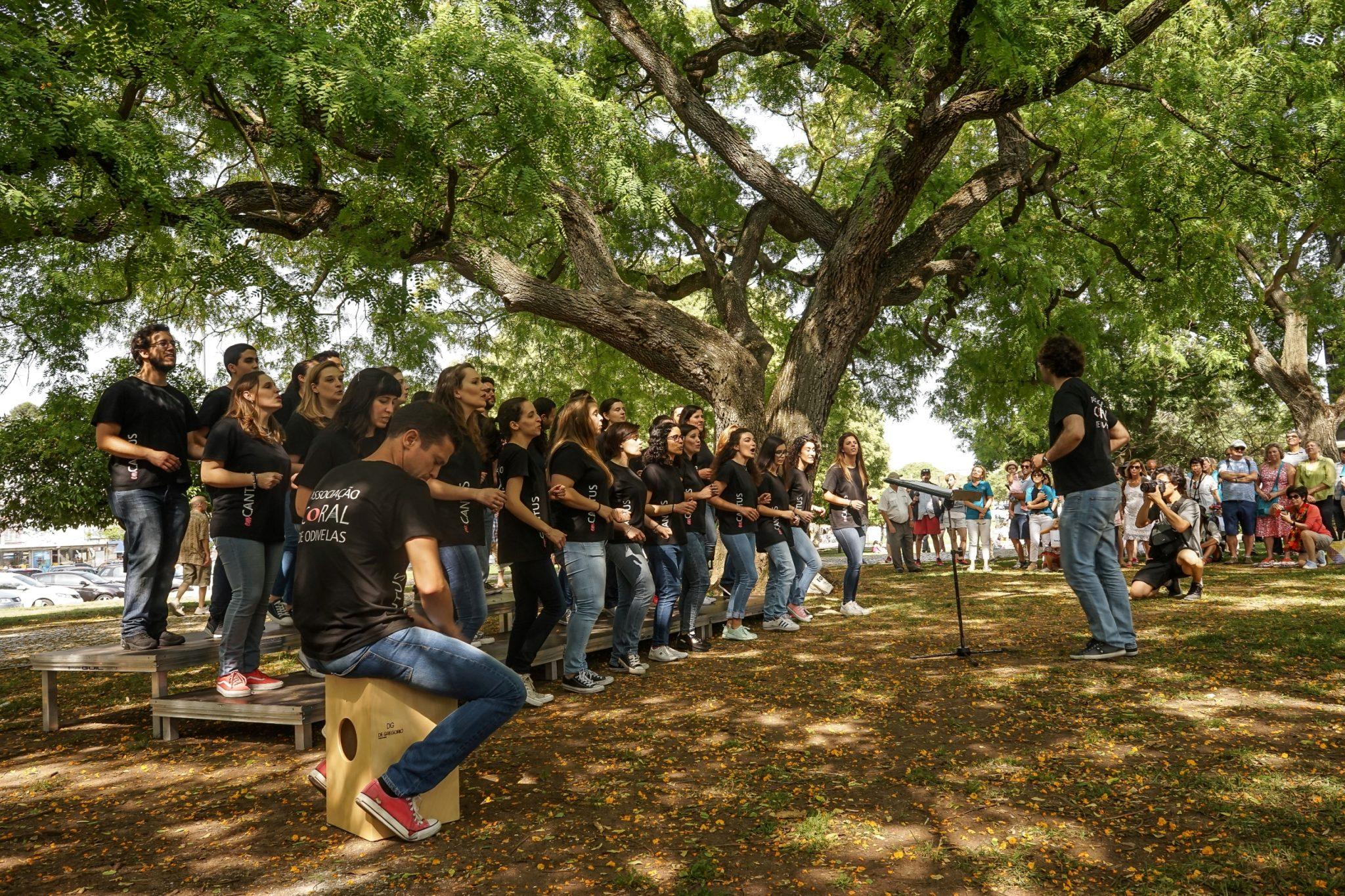 Num jardim, sob uma árvore, um grupo de jovens com t-shirts pretas canta. À sua frente, o maestro com um cavalete. À direita, um homem toca percussão. Ao fundo é visível o público que assiste à atuação.