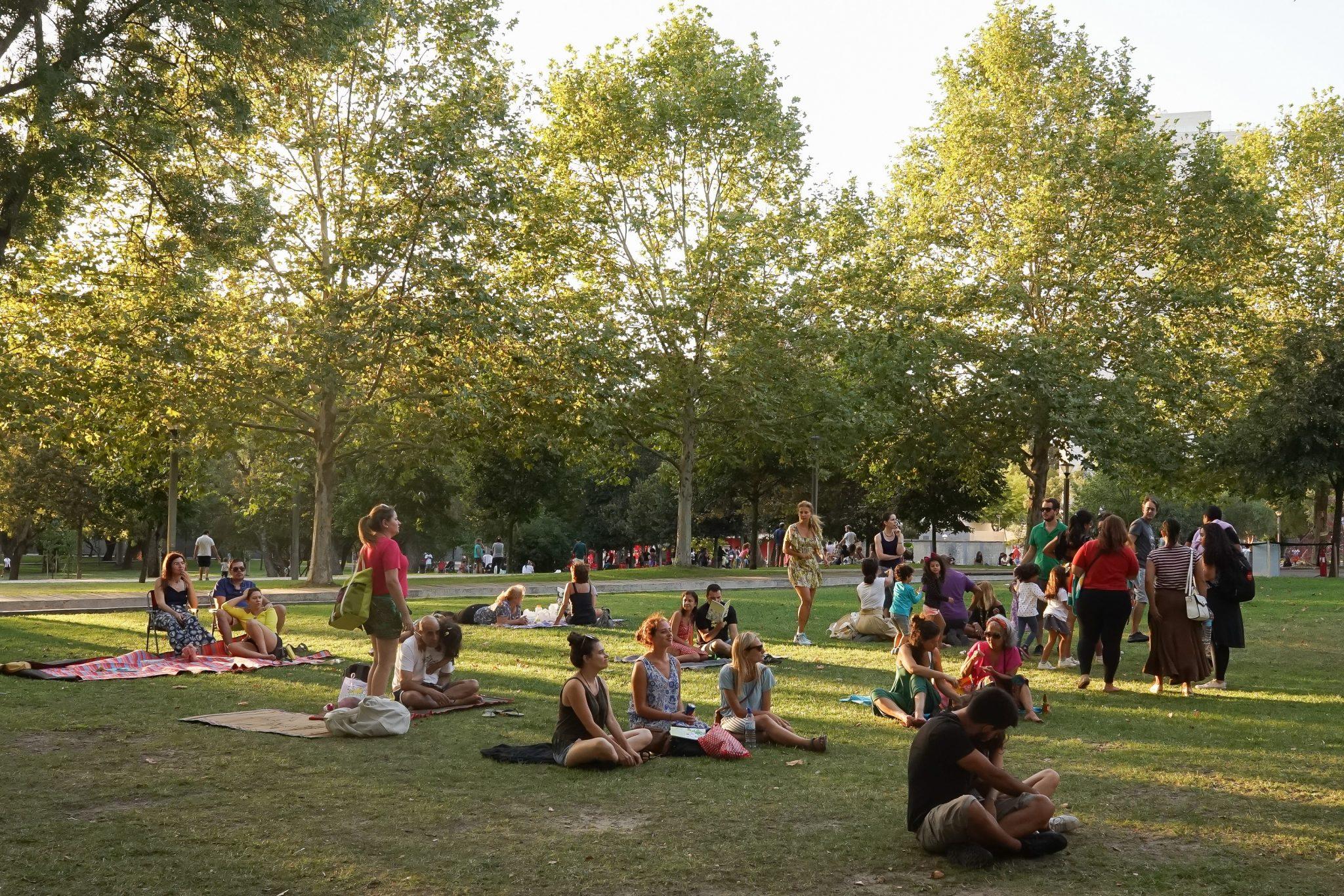 Pessoas sentadas e de pé, de lado para o observador, num jardim