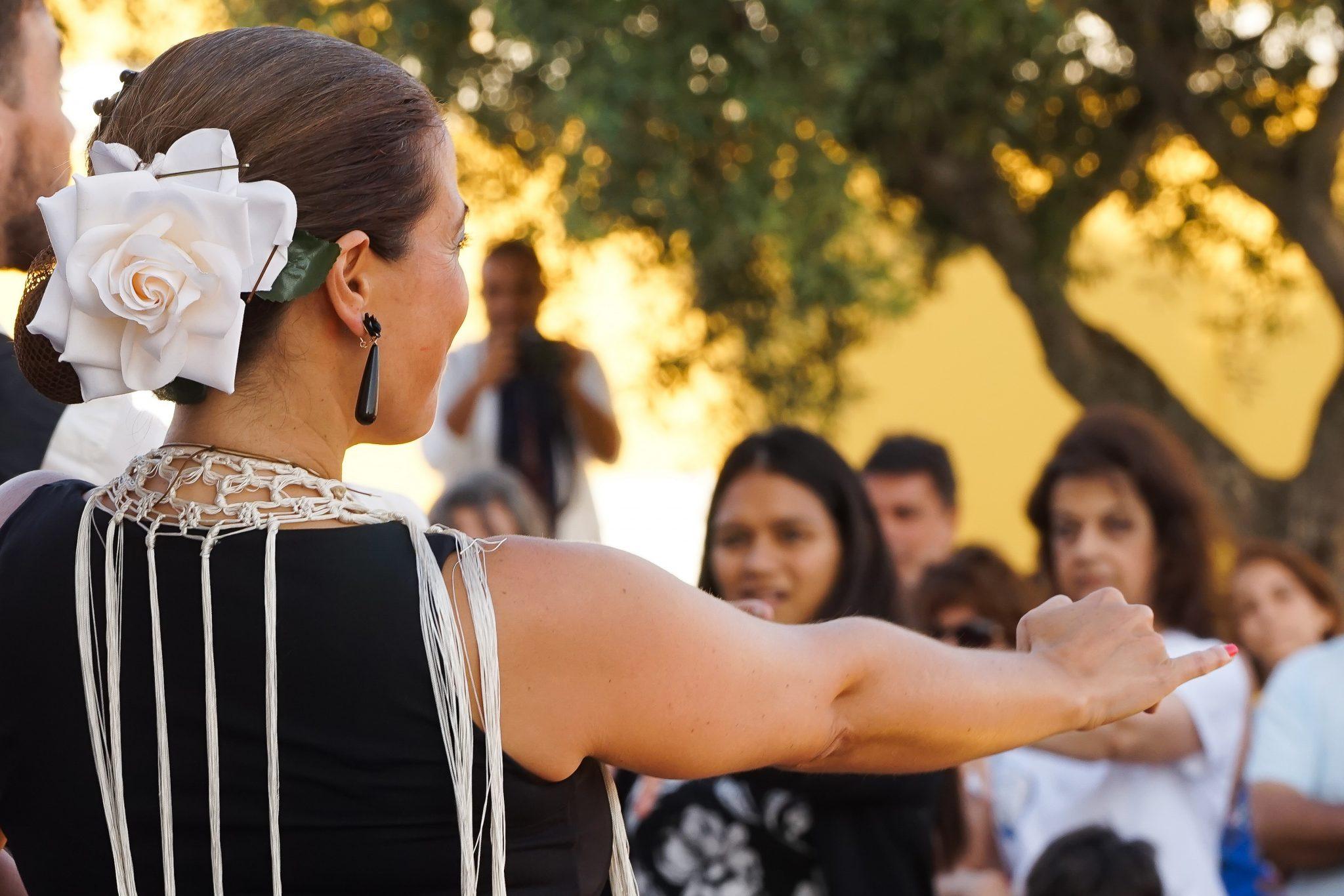Num primeiro plano, de costas para o observador, uma mulher, com uma flor branca no cabelo preso, demonstra um passo de dança sevilhana. Ao fundo, de frente para o observador, um grupo de pessoas segue as indicações dadas.